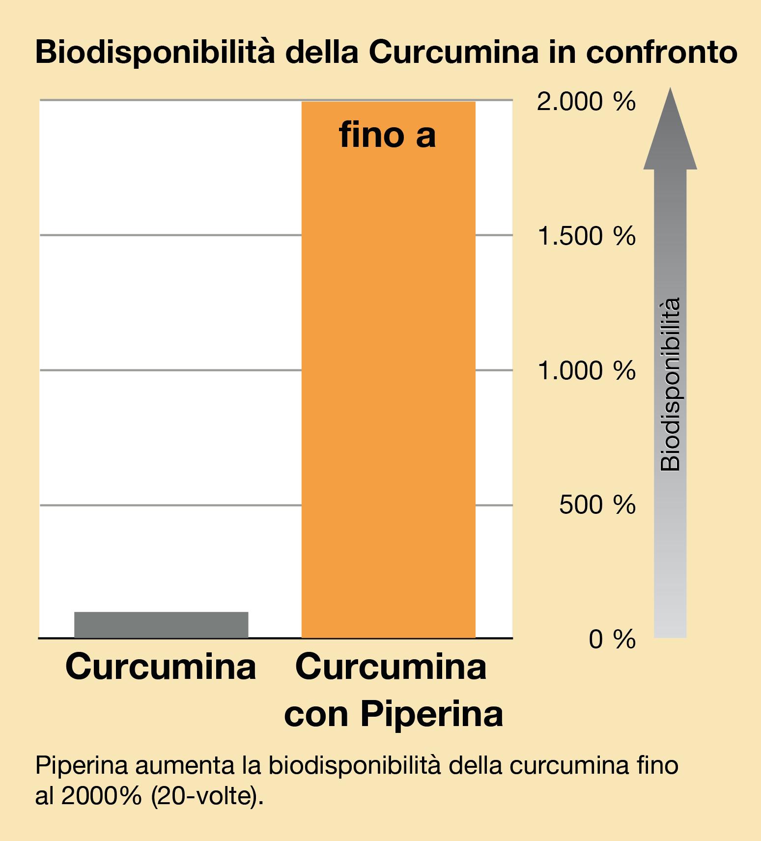 Curcumina Biodisponibilita di piperina