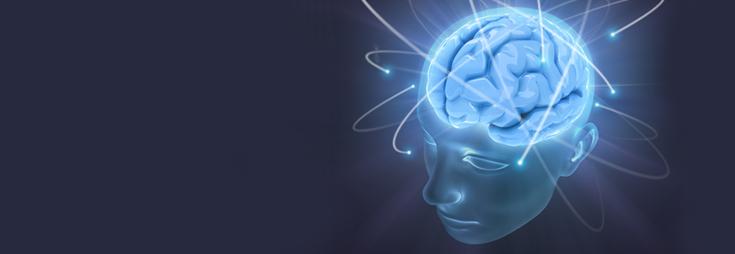 La salute del cervello, i nervi e la memoria