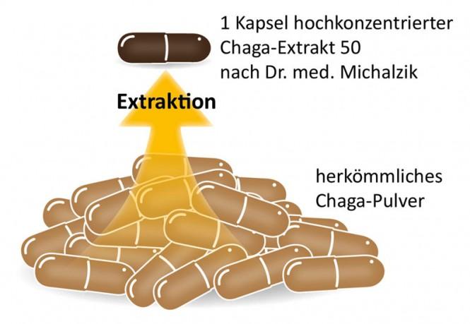 Chaga-Extrakt 50